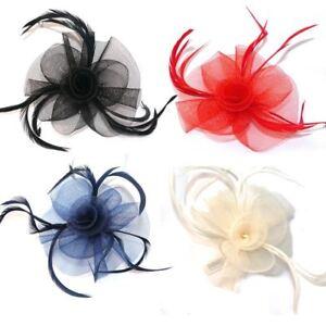 e958803b6 Looped Net & Feather Hair Fascinator Beak Clip Brooch Pin Black Red ...