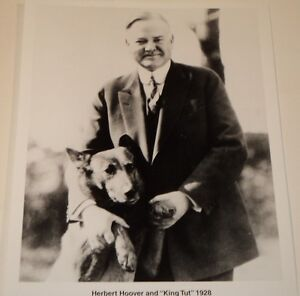 HERBERT-HOOVER-amp-DOG-034-KING-TUT-034-1928-8-X-10-B-amp-W-PHOTO