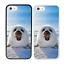 Animaux-Arctiques-Pare-Chocs-Coque-Apple-iPhone-5-5s-SE-6-6s-7-8-Plus-X-XS-XR miniature 11