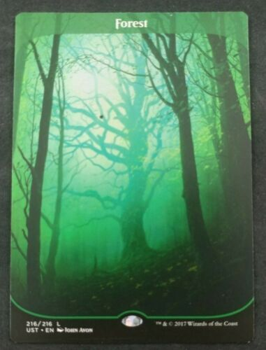 MTG Magic The Gathering Forest Unstable  HP