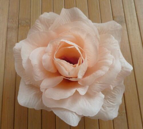 Perchero con floración-krokodilspange Rose champán nuevo