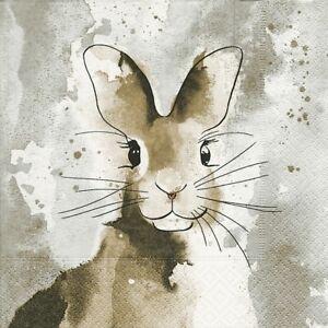 Rabbit M for Decoupage 4 Single Vintage Table Paper Napkins Lunch Party