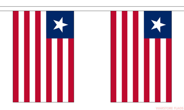 Vietnam National Bunting 9 metres long 30 flags