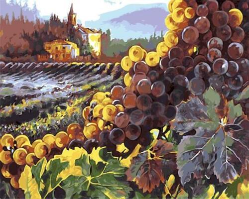 Van-Go Paint-By-Number Kit Vineyard Grapes