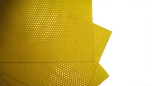 Kuntzsch 310x226 Mittelwände in Standartzellmaß 5,4mm aus Bienenwachs