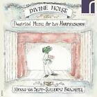 Divine Noise-Theatrical Music For Two von Guillermo Delft Menno Van & Brachetta (2015)
