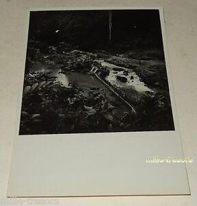 PHOTO-ancienne-AEF-GABON-Une-exploitation-aurifere