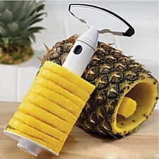 Fruit Pineapple Corer Slicer Peeler Cutter Parer Stainless Kitchen Easy Tool Kit