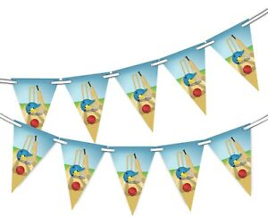Cricket-Bunting-Banner-15-flags-National-Sport-Celebration-by-Party-Decor