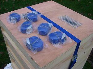 Beekeeping Economy Hive  Straps x 6
