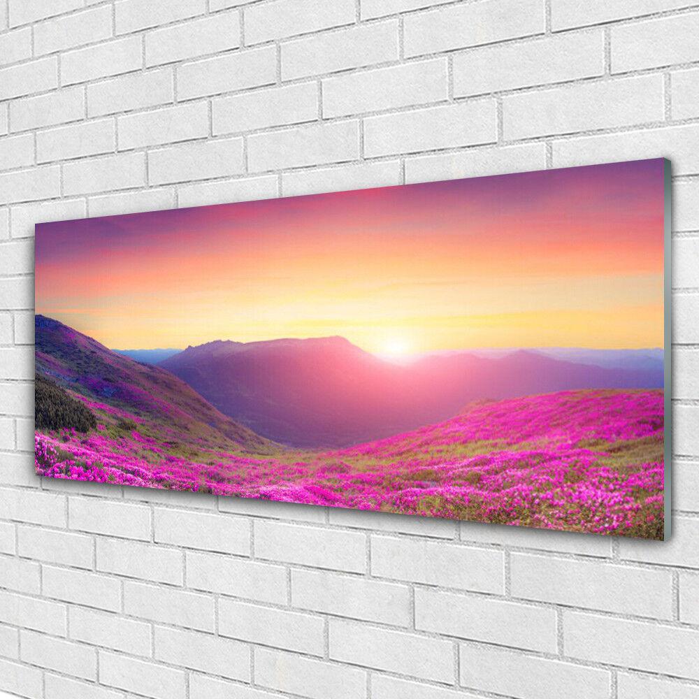 Acrylglasbilder Wandbilder aus Plexiglas® 125x50 Sonne Gebirge Wiese Natur