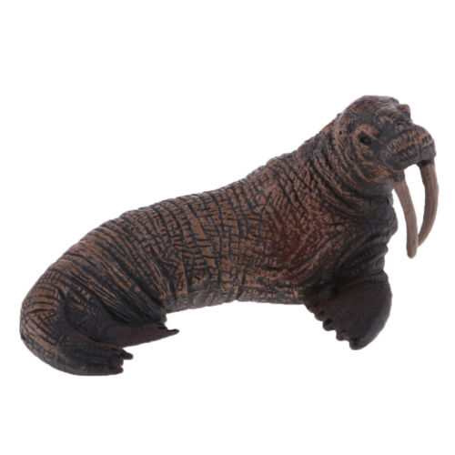 Sea Creatures Model Solid Walrus Figure Model Kids Education Cognitive Toy