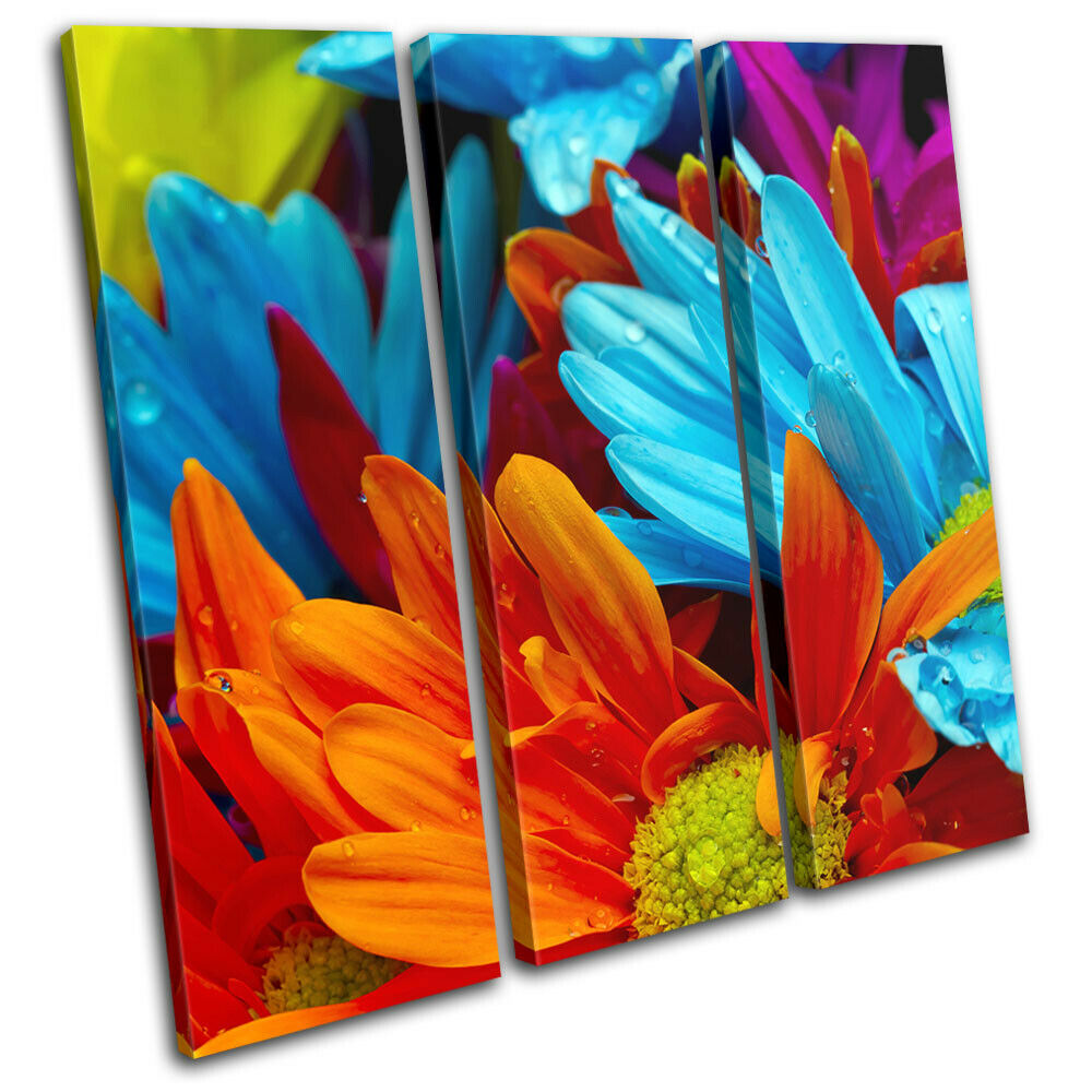 Gerbera Blossom Flower Rainbow Floral TREBLE Leinwand Kunst Bild drucken