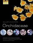 Anatomy of the Monocotyledons Volume X: Orchidaceae by William Louis Stern (Hardback, 2014)