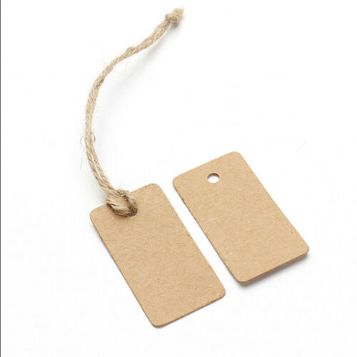 100pcs Craft Paper Tags Craft Gift Favour Lolly Wedding Party Bag Name Label LL