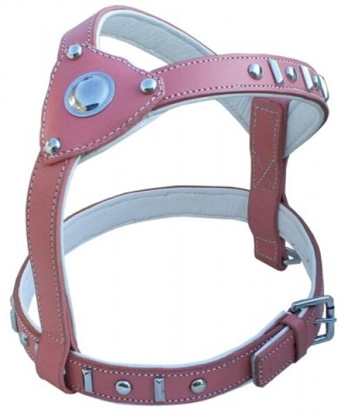 Pelle stoviglie Knight rosa American Pit Bull Staffordshire Bull Terrier Boxer