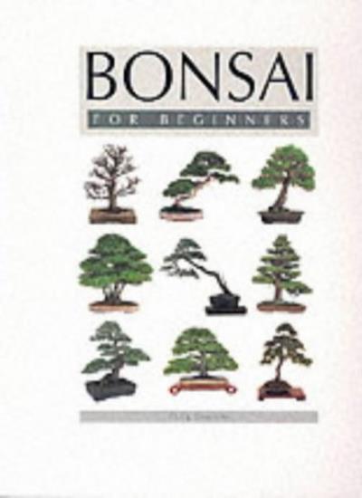 Bonsai for Beginners By Craig Coussins. 9781856056281