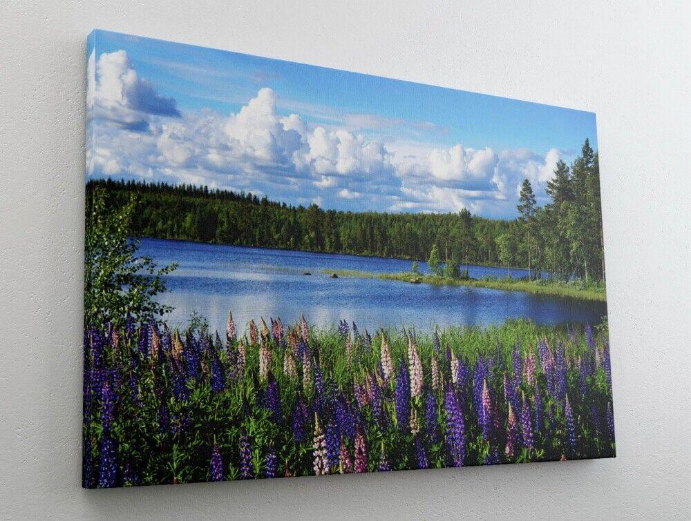 Ruhiger See mit Wald Natur Landschaft Leinwand Bild Wandbild Kunstdruck L0317