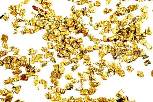 10 GRAMS ALASKAN YUKON BC NATURAL PURE GOLD NUGGETS #30 MESH FINES FREE SHIPPING