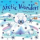 Arctic Wonders by Sally Hopgood (Board book, 2012)