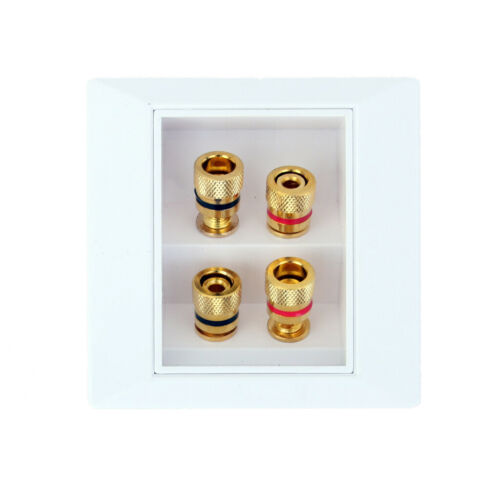 Speaker TERMINAL Wall Face Plate Mit 4x Gold klarem Binding Post