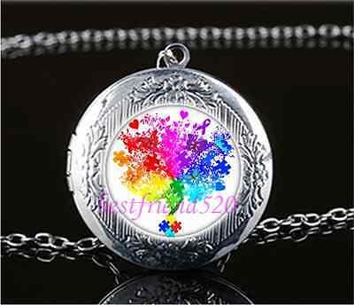 Fairy Colorés PHOTO cabochon verre Tibet Argent Médaillon Collier Pendentif