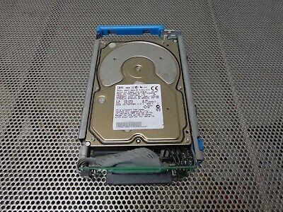 IBM 25L1861 25L3101 9GB RS//6000 68-pin SCSI Hard Drive DNES-309170W Tested