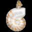 Old-World-Christmas-NAUTILUS-SHELL-12150-N-Glass-Ornament-w-OWC-Box thumbnail 2
