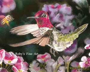 Hummingbird-and-Honey-Bee-Art-034-Garden-Gossip-034-8-034-x10-034-Giclee-by-Roby-Baer-PSA
