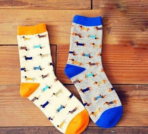 Dachshund Sausage Dog Weiner Teckel Ladies/' Socks Blue or Orange BN
