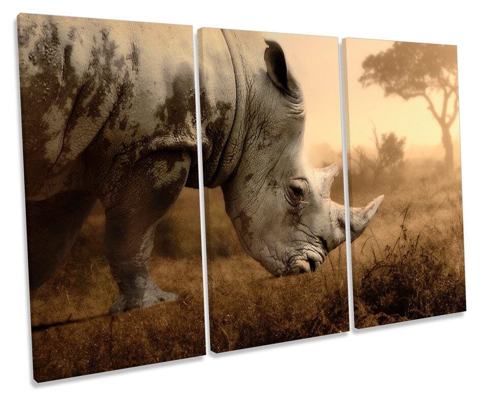 Rhino Sunset CANVAS WALL ART TRIPLE Box Frame Print