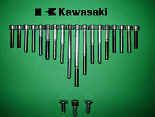 Kawasaki KH100 100cc Engine Side Covers SS Stainless Allen Screw Kit New