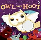 Noisy Touch and Feel: Owl Says Hoot by Libby Walden (Board book, 2016)