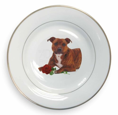 Staffie with Red Rose Gold Rim Plate in Gift Box Christmas Present, ADSBT6RPL
