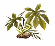 Komodo Jungle Canopy Reptile Vivarium Terrarium Rainforest Plant