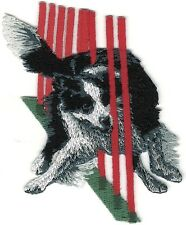 "2 1//2/"" x 3 3//8/"" Border Collie Dog Breed Catching Frisbee Embroidered Patch"