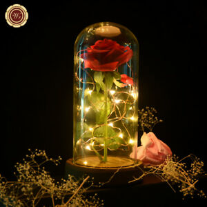 WR-Beauty-and-the-Beast-Enchanted-Red-Rose-Glass-Dome-Lamp-Valentine-039-s-Gifts-Her