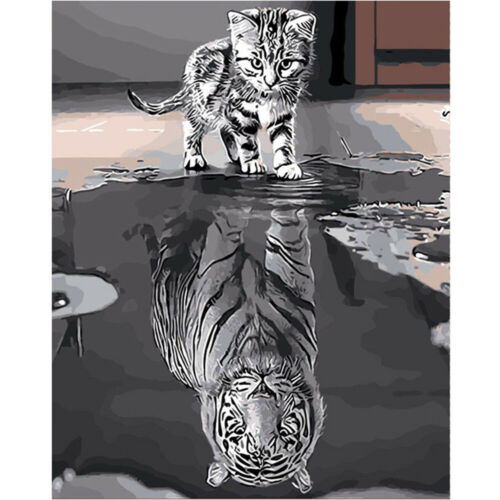 Novelty Reflection Cat /& Tiger Hand Painted By Numbers Oil Painting Home Decor
