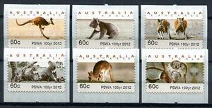 Australia-Australia-2012-ATM-canguro-KOALA-ANIMALI-ANIMALS-pswa-post-FRESCHI-MNH