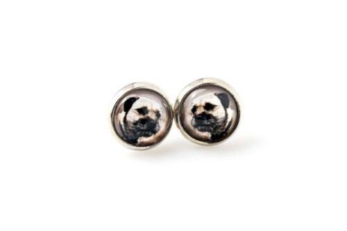 Haustier in Ihrem Ohr Border Terrier Ohrringe mit Kasten DE