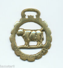 OXFORD CANAL - COW/ BULL  horse brass (5151)