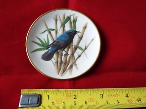 FRANKLIN-PORCELAIN-SONGBIRDS-OF-THE-WORLD-MINI-PLATE-6