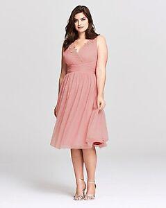 7fda41f7acad1 Little Mistress Rose Applique Mesh Prom Dress UK 24 RRP £60 RE078 HH ...