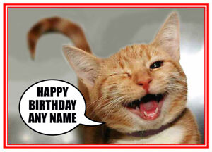 Personalised Cute Funny Cat Kitten Winking Quality Birthday Other Card Free Post Ebay