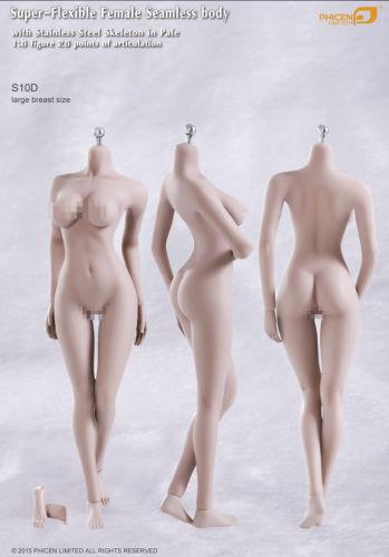 Phicen weibliche nahtlose körper s10d große brust edelstahl skelenton in pale