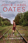Little Bird of Heaven by Professor of Humanities Joyce Carol Oates (Paperback / softback, 2010)