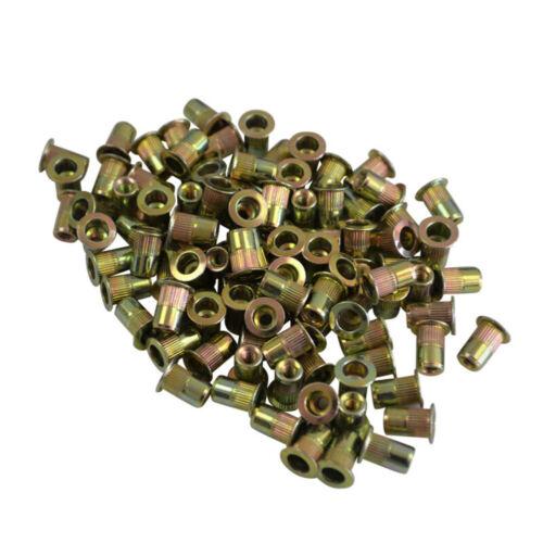 Metric Nutsert Rivet Nuts M3 M4 M5 M6 M8 M10 M12 Blind Nutserts Bulk Pack Set