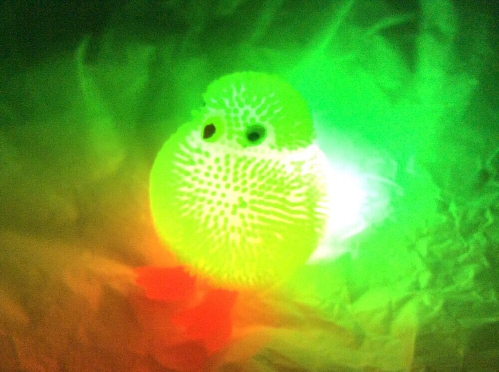 Autism Stress ADHD Special Needs Baby Puffer Chick Squidgy Sensory Calming Toy