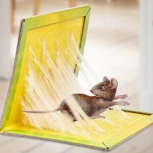 Rat Trap Snare Mouse Glue Snare Traps Mice Rodent Sticky