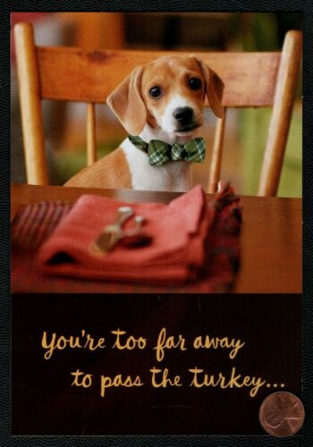 Thanksgiving  Dog Puppy Bow Tie Table Chair Greeting Card New W// TRACKING